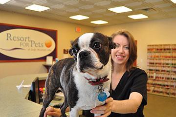 Resort for Pets | Dog Daycare, Boarding | Fort Worth, Haslet TX